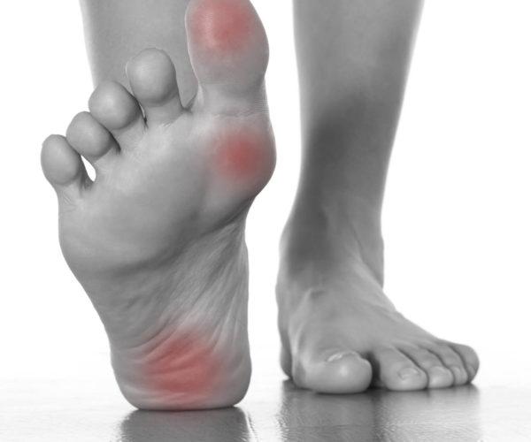 hælens anatomi